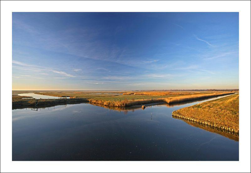 Winter in de polder Koudenhoek